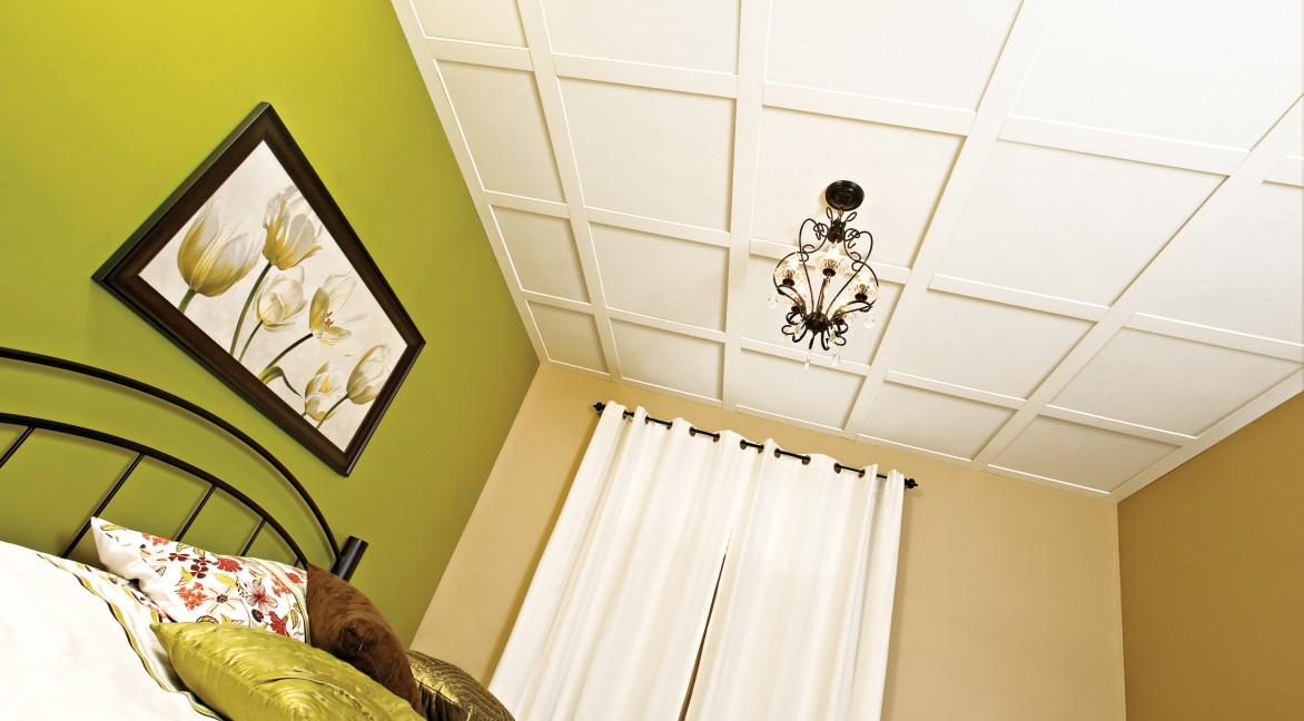ceilings 101 embassy ceiling system elegant ceilings walls. Black Bedroom Furniture Sets. Home Design Ideas