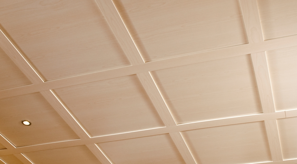 Ceilings 101 embassy ceiling system elegant ceilings for Install consul